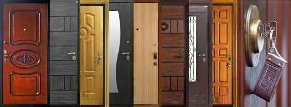 Лучшие производители входных дверей
