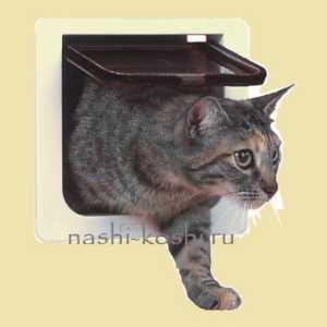 Монтаж дверки для кошек в дверь