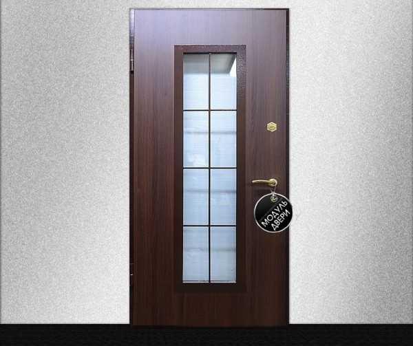 Обзор разновидностей дверей из стекла
