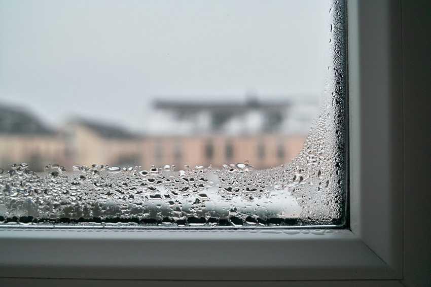 Потеют деревянные окна в доме что делать народные средства