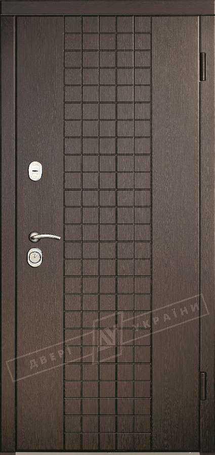 13 лучших металлических входных дверей