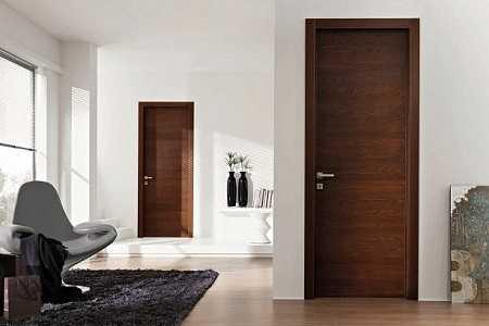 Двери из массива: достоинства и особенности (23 фото)